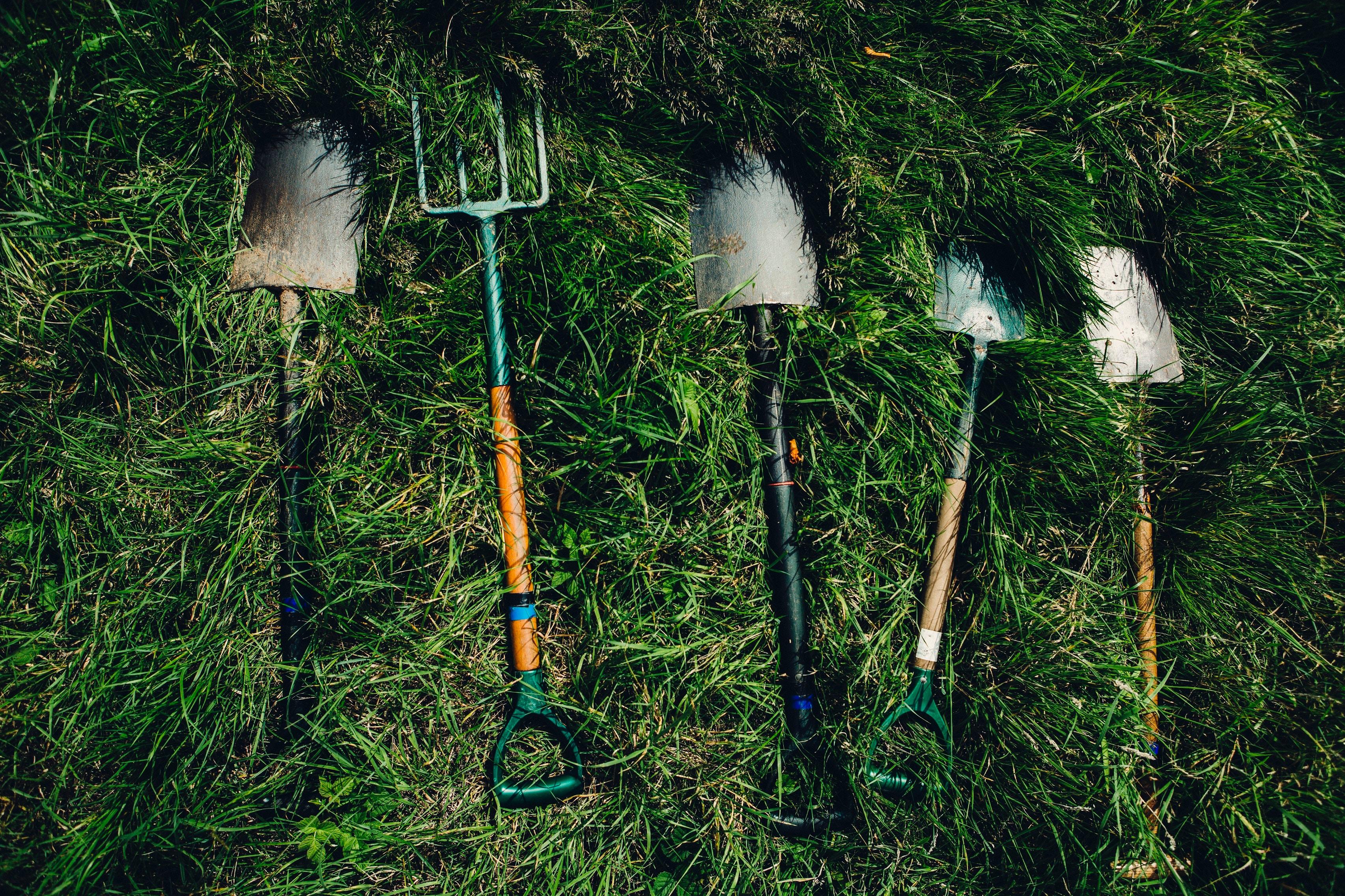 Schaufel und Sparten im Gras