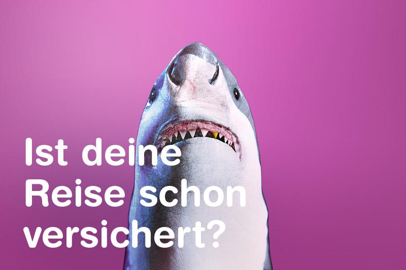 Reiseversicherung - Weißer Hai mit Goldzahn