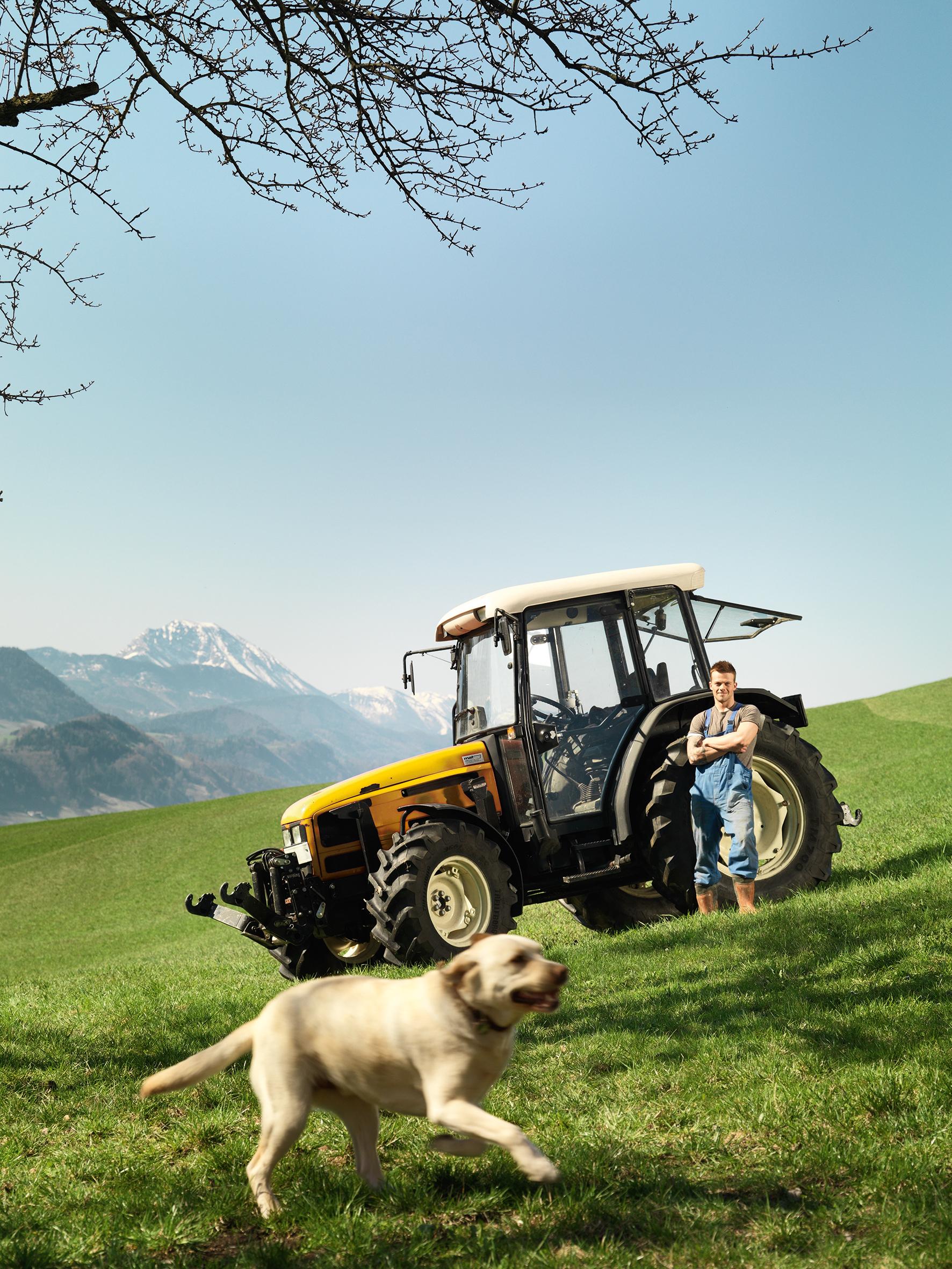 Golden Retriever vor gelbem Traktor im Gelände