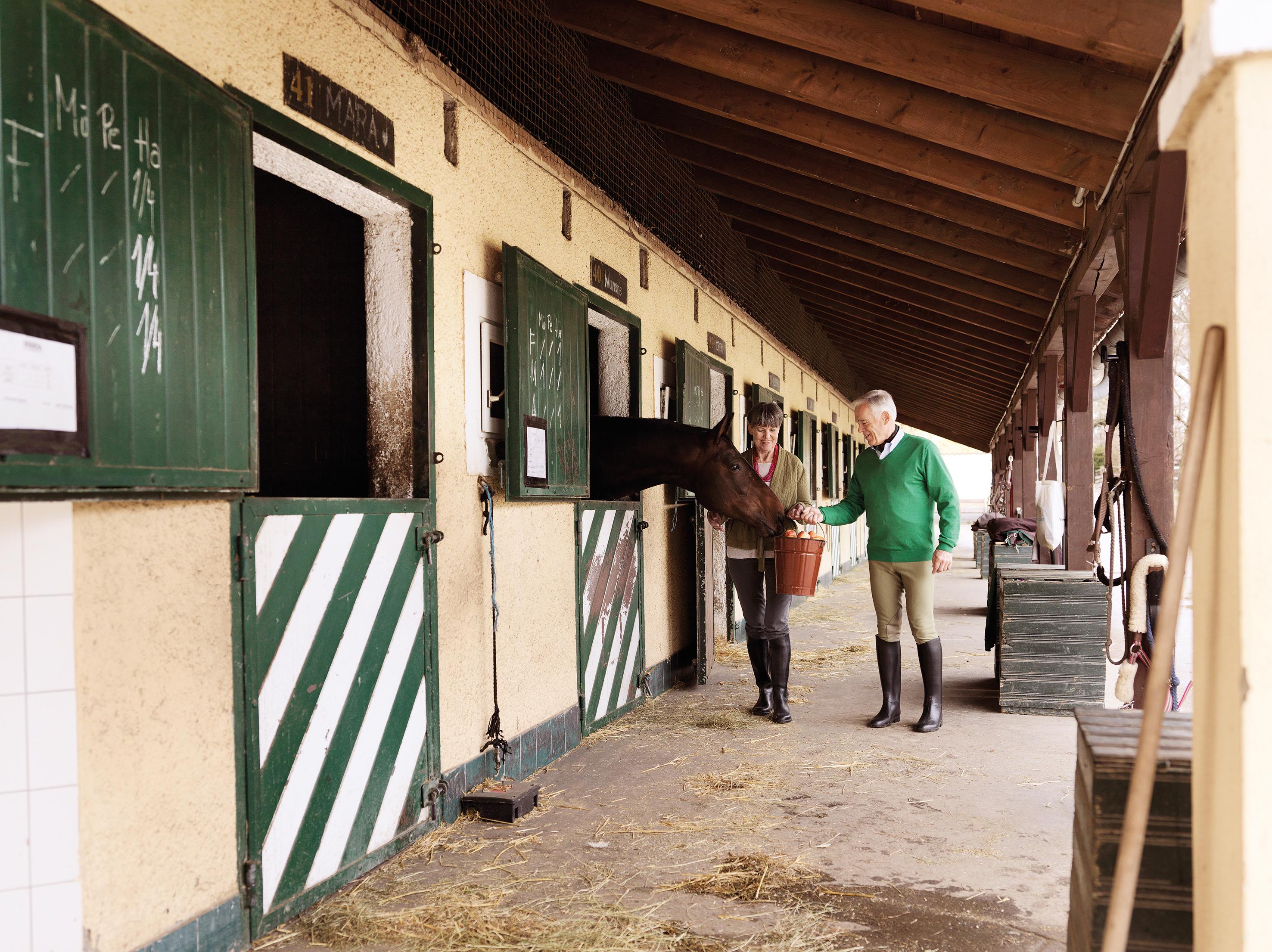 Aelteres Paar im Pferdestall